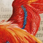 Banner_Summer_Magic_4