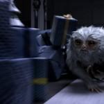 Demiguise_Fantastic_Beasts_CC_Trailer_WM