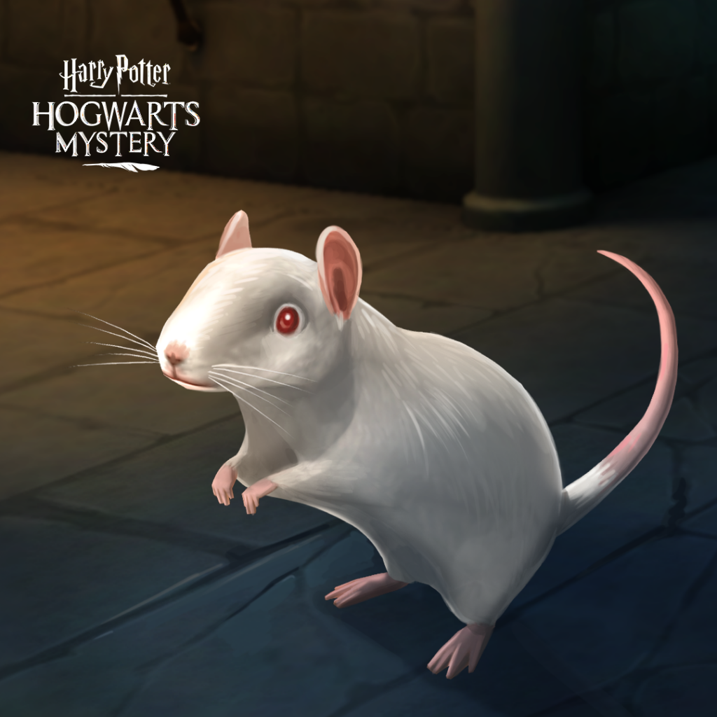 HPHM_Pets_Rat_Albino