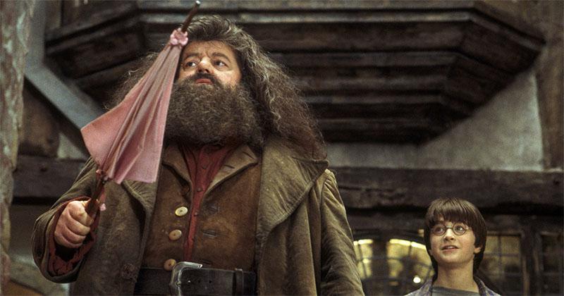 Hagrid-umbrella