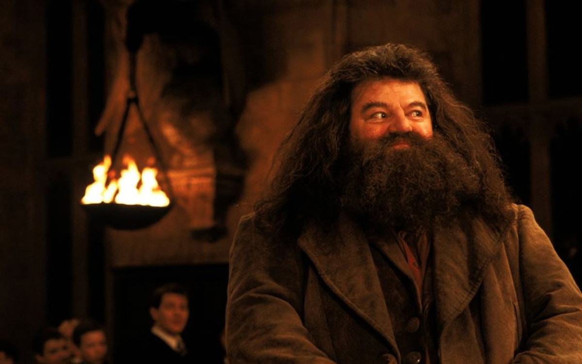 a very happy belated birthday to rubeus hagrid theleaky