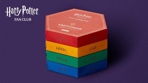 Harry Potter Fan Club Pin Seekers Hogwarts House Box Sets