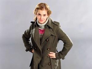 Hermione-Granger-Wallpaper-hermione-granger-24488773-1024-768