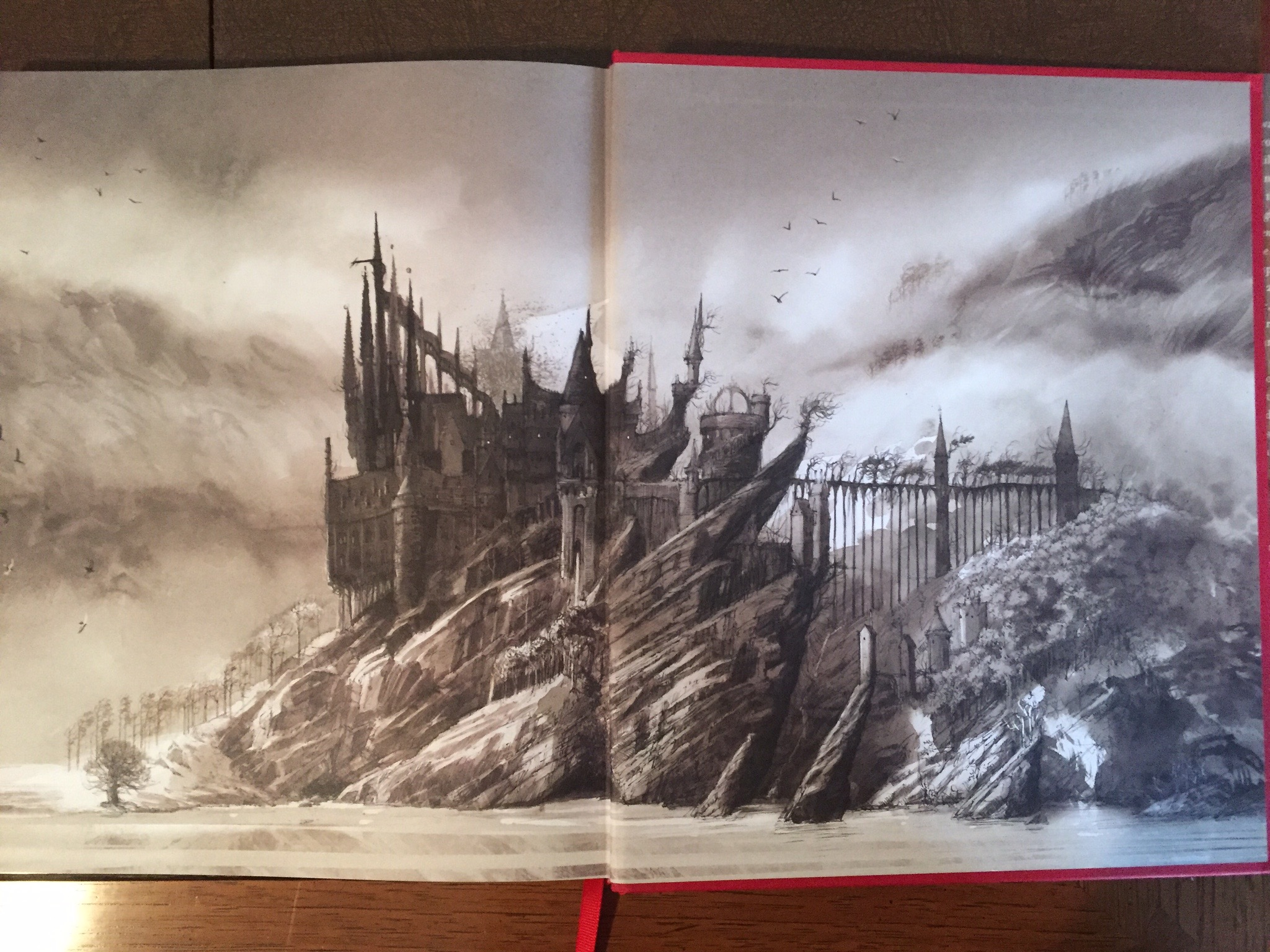 Harry Potter Book Jim Kay : Leaky s review of jim kay illustrated edition