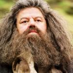 Rubeus-Hagrid-Wallpaper-hogwarts-professors-32796365-1024-768