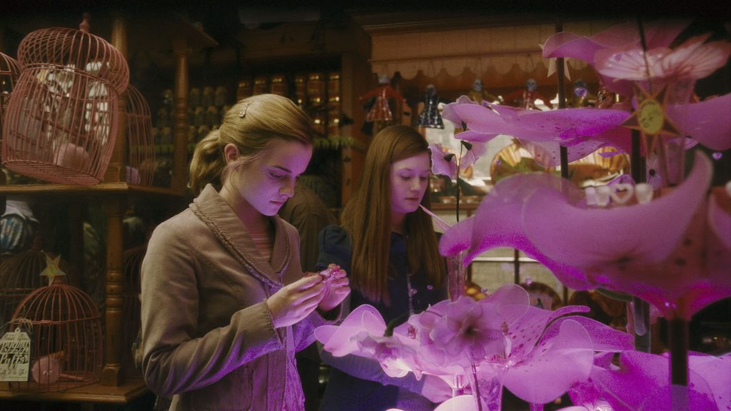 amortentia love potion scene Harry Potter