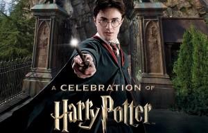 celebration-harry-potter-1