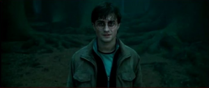 harry_potter__come_to_die_by_twilightxgirl-d335b6d