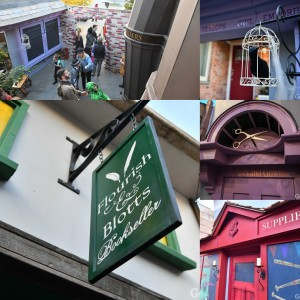 seattlediagonalleycollage