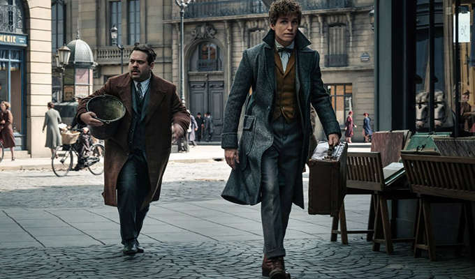 Fantastic Beasts Director Reveals the French Word for 'Muggle'