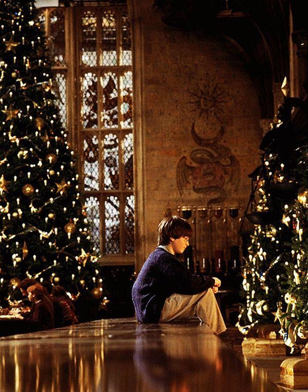 Harrylookingatchristmastree