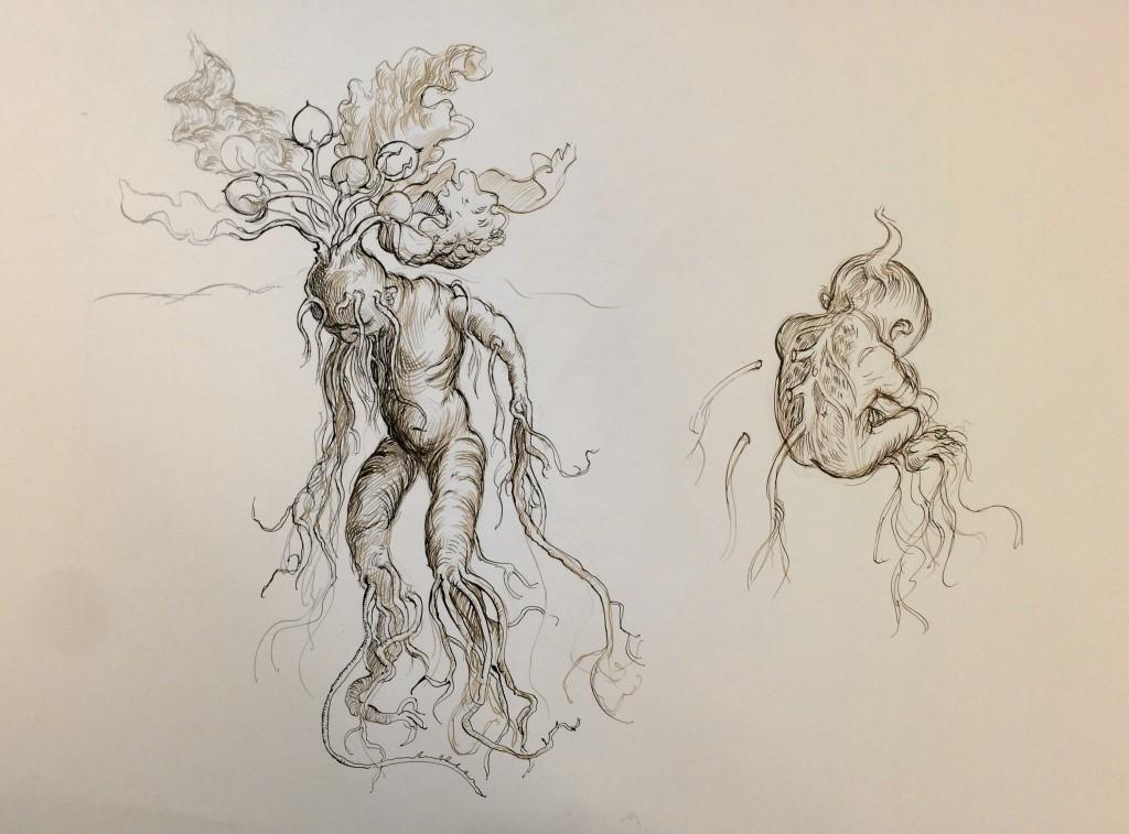 Mandrake sketch by Jim Kay c Bloomsbury Publishing